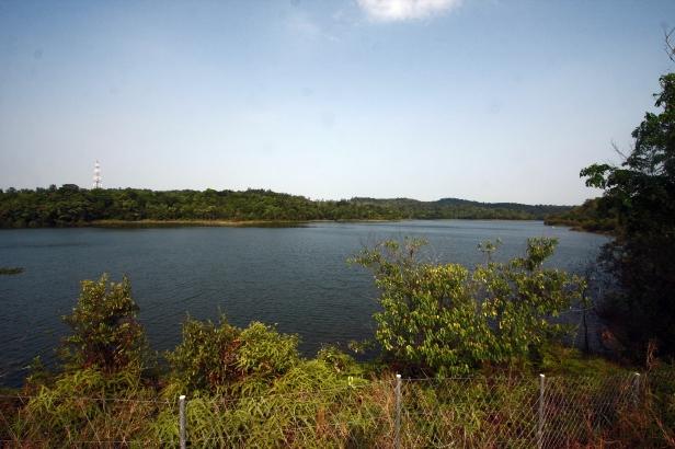 Dam Muka Kuning di Batam merupakan salah satu objek yang berada di dalam kawasan Hutan Taman Wisata Alam (TWA) Muka Kuning