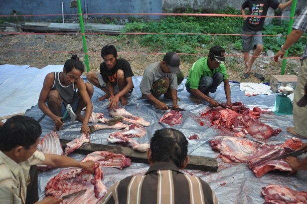 Indonesian muslims cuts the meat of sacrificial cows in Eid al-Adha in Makassar, Indonesia on September 24, 2015. Indonesian Muslims celebrated Eid al-Adha to commemorate the Prophet Ibrahim's readiness to sacrifice his son as a sign of his obedience to God, during which they sacrifice permissible animals, generally goats, sheep, and cows.