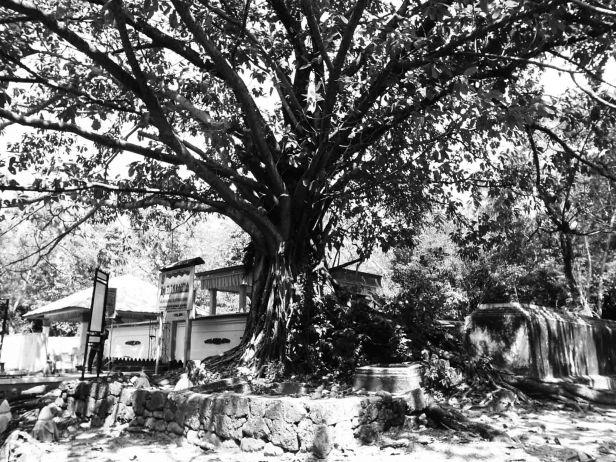 Turis Katrok - Tanjungpinang-7