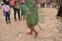 Seorang umat Katolik membawa daun palem saat perayaan Minggu Palma.