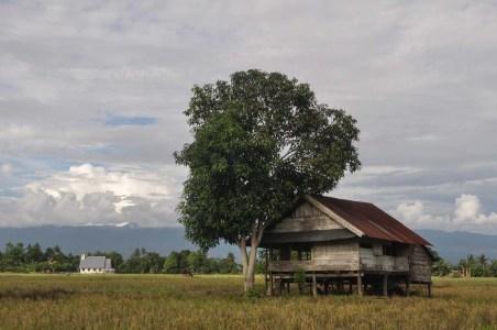 Luwu Timur (Yermia Riezky/Alamy)